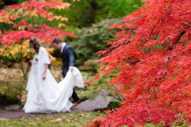Na co nezapomenout na svatbě, když už teď nevíte, co dělat?